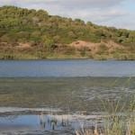 Sardiniens einziger Süßwassersee: Lago di Baratz