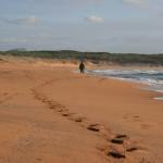 Der weite Strand von Porto Ferro in der Nebensaison