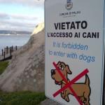 """Zugang mit Hunden verboten (eigentlich """"für Hunde"""")"""