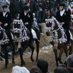 Reiter - und Reiterinnen