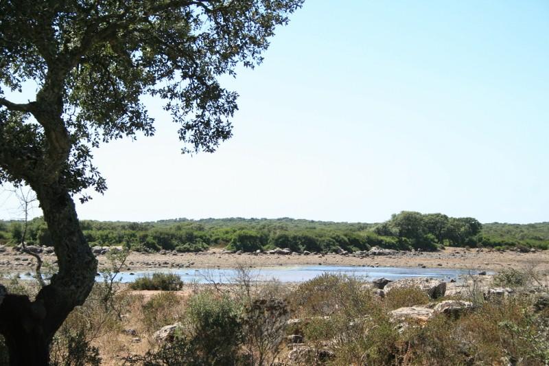 Ein saisonaler See (Pauli) in der Giara