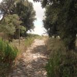 Auf 1000 Jahre alten Steinen hinauf nach Luogosanto