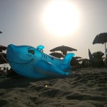 Haialarm am Strand von Alghero