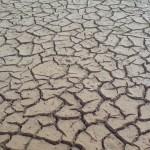 Trockenheit kurz hinterm Strand