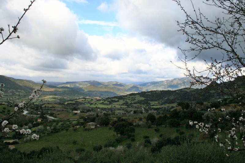 Hügellandschaft vor Mamoiada