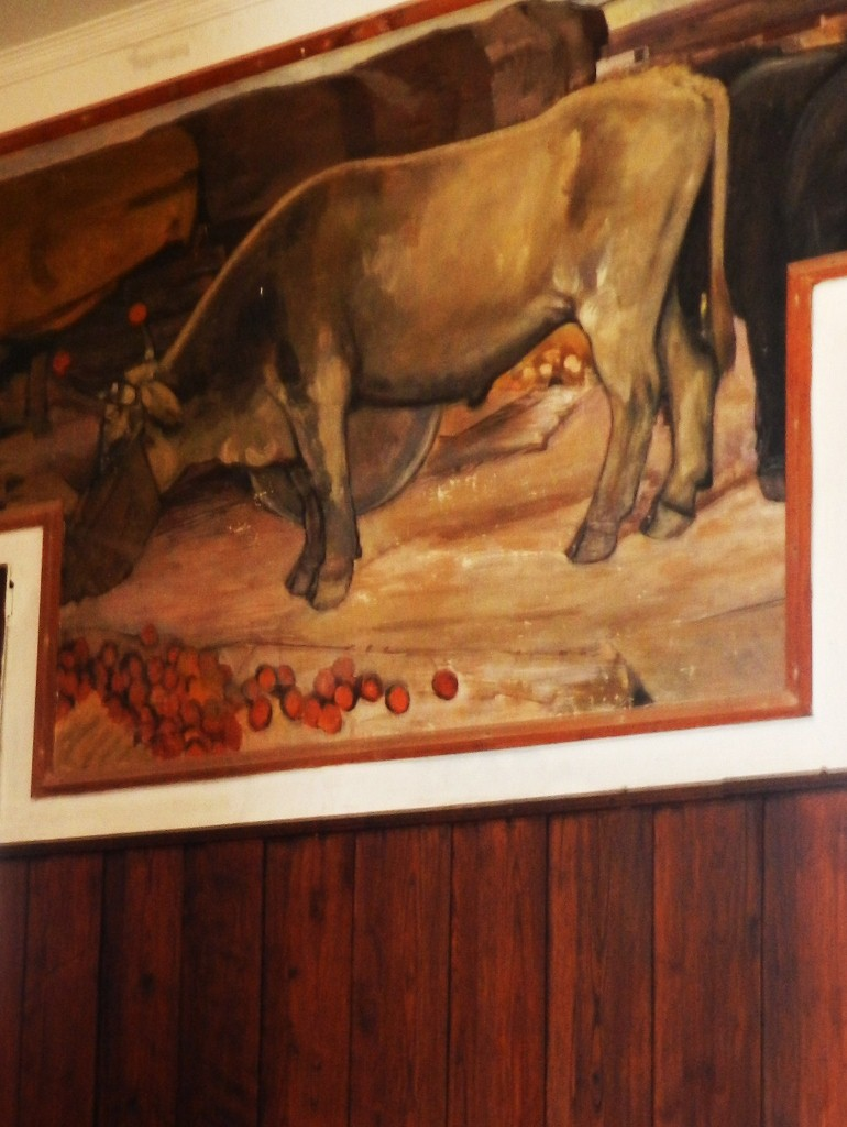 Rinder werden auf den Weiden rund um Tempio auch heute noch gehalten