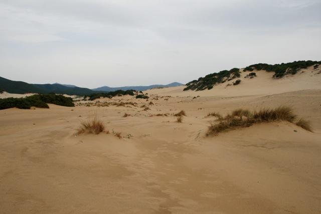 Le Dune di Piscinas: Befahren verboten. Zu Fuß oder mit dem Pferd ist es okay.