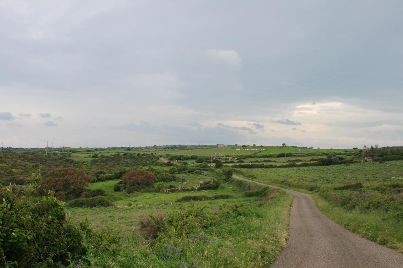 8 km durch liebliche Landschaft