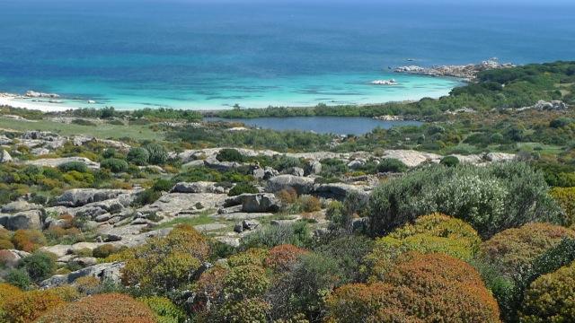 Traumhafte Buchten der Isola Asinara