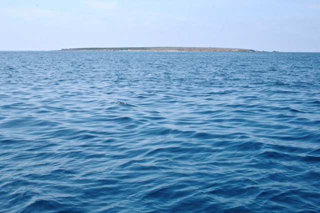 Isola Mal di Ventre liegt wie ein platter Pfannkuchen vor der Küste