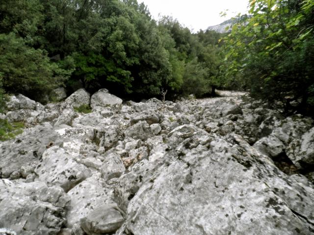 Flussbett Sa Oche
