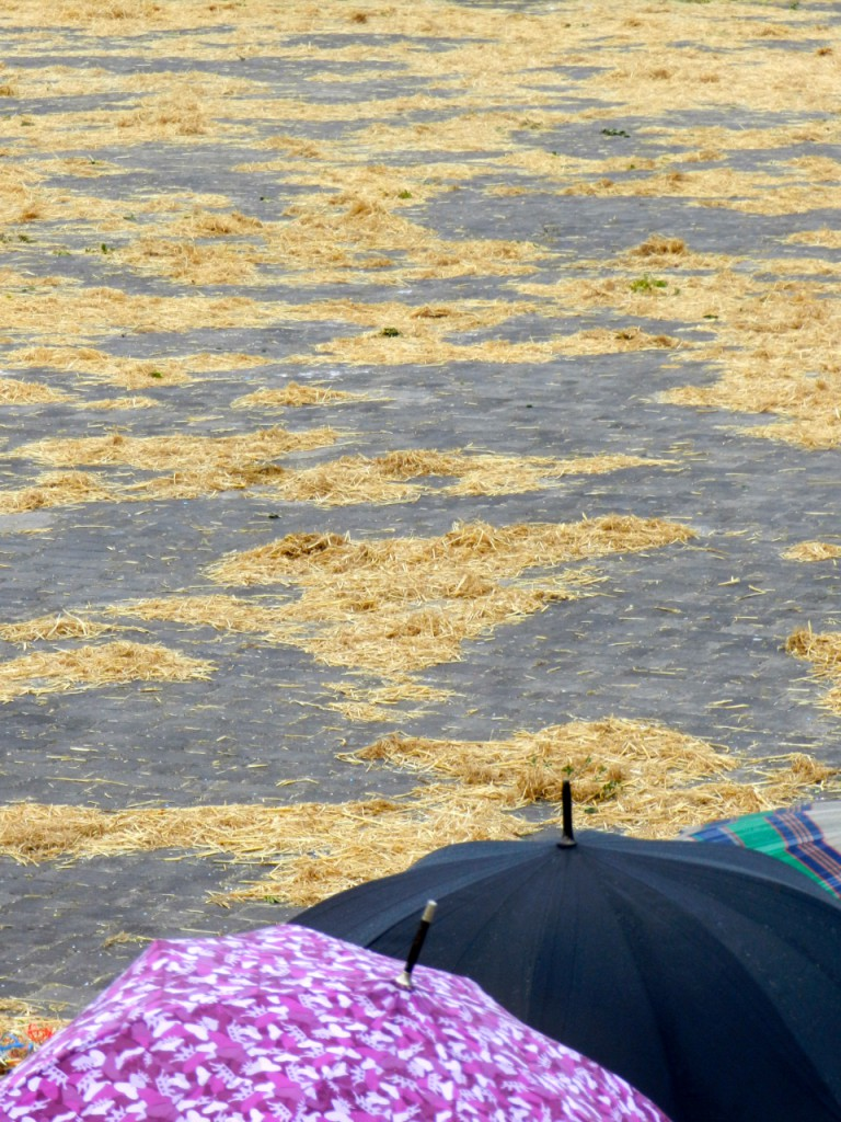 Piazza Sant'Isidoro, präpariert mit Stroh ... man wartet im Regen