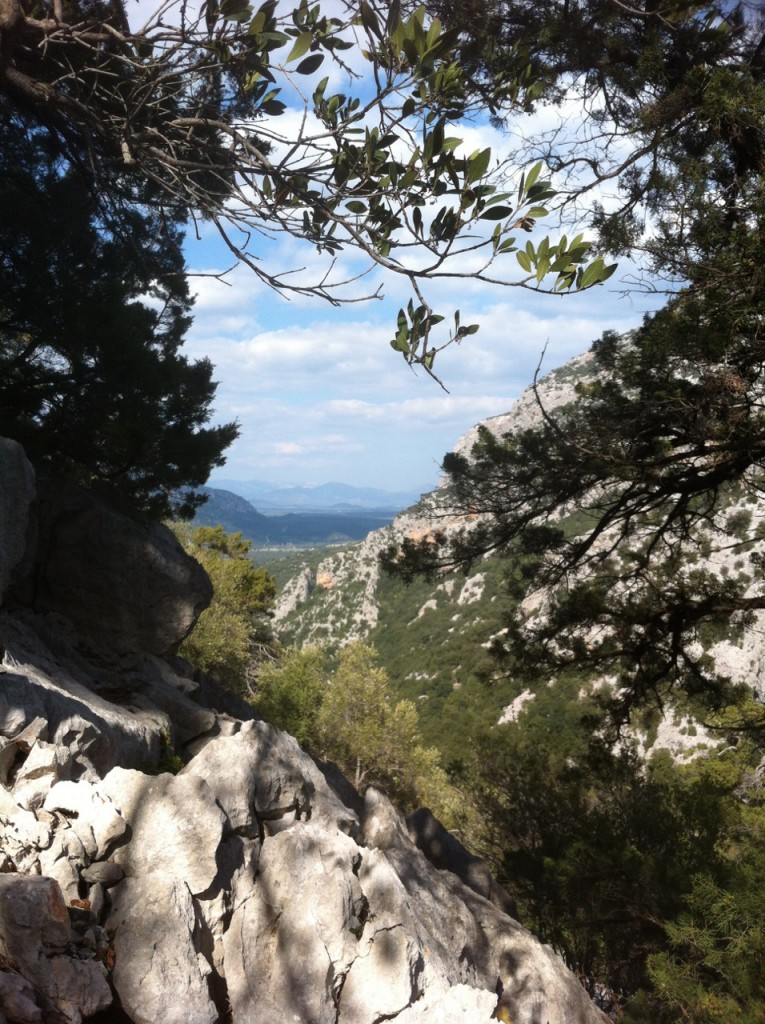 Ganz nah bei Oliena: das wundervolle Valle di Lanaitto