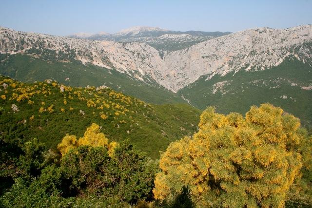 Weite und Vielfalt: Sardinien ist ganz schön groß.
