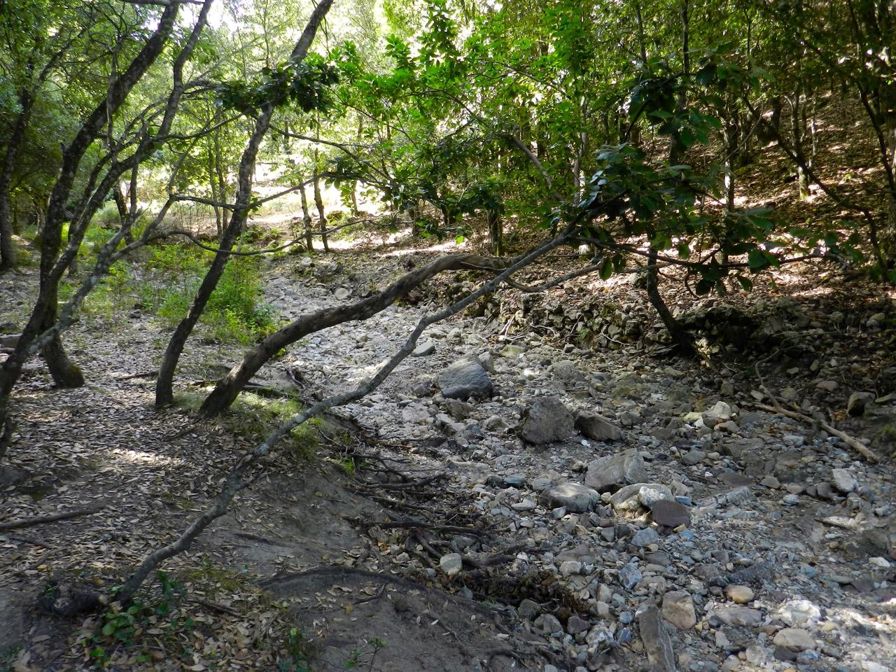 Nur im Sommer: trockenes Flussbett im Wald bei Sadali
