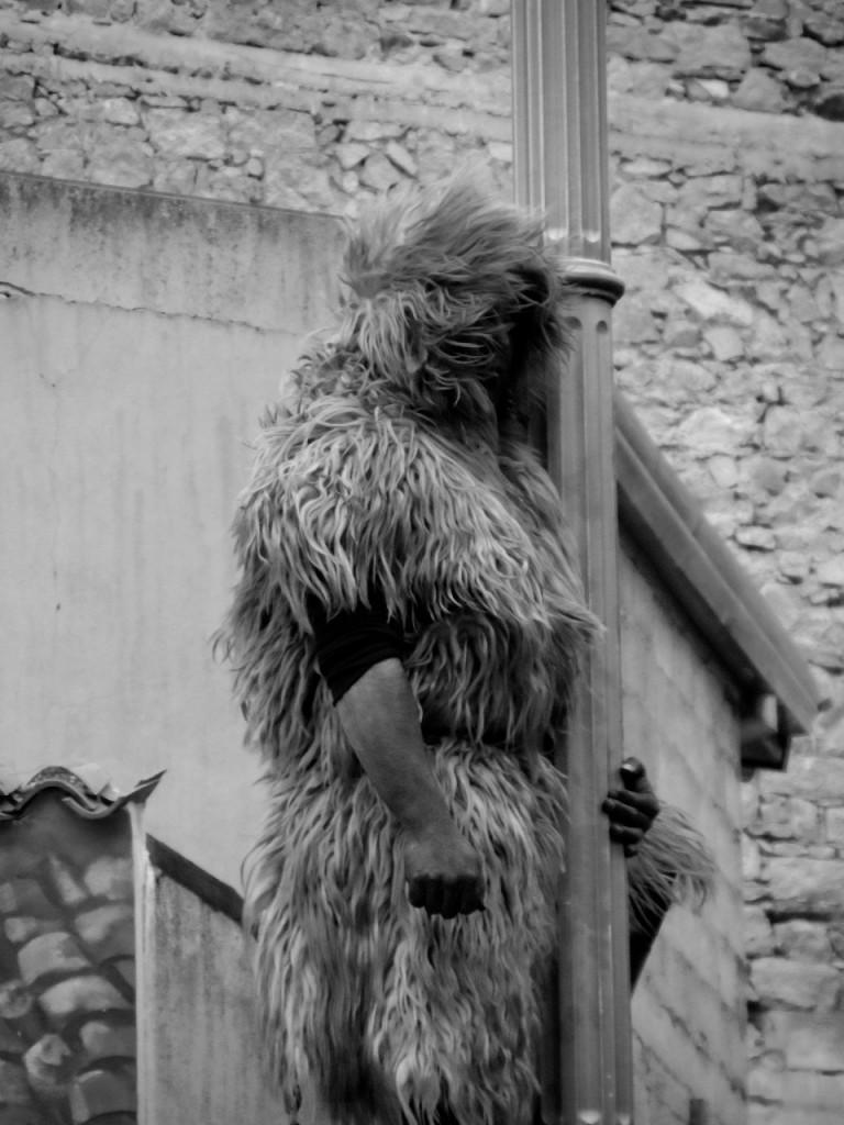 S'Urthu - das wilde Tier