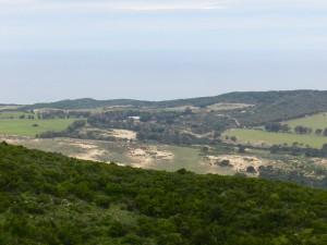 Von oben recht grün, aber die Dünen reichen weit ins Hinterland
