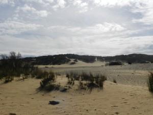 Dünen von Piscinas