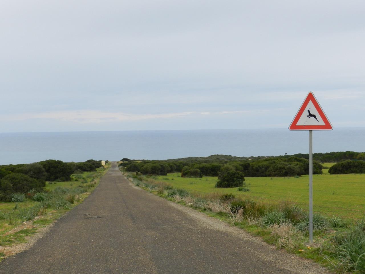 Kaum zu erahnen: Am Ende der Straße beginnen die Dünen von Scivu