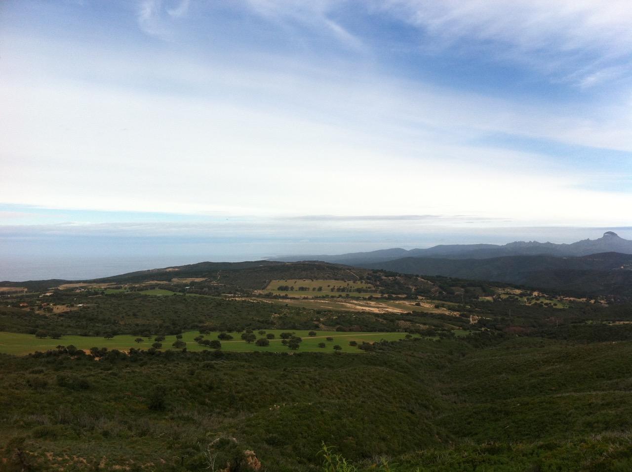 Von oben sehr grün: die Dünen reichen weit ins Hinterland