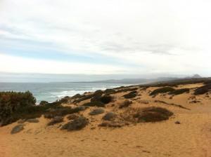 Scivu: durch die goldene Dünenlandschaft