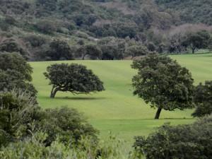 Das Hinterland von Scivu: heute fruchtbares Land, morgen Wüste?