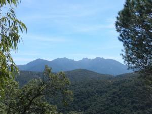 Blick auf die Gipfel des Monti dei Sette Fratelli: Hier lebt der sardische Hirsch