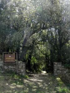 Wanderwege en masse. Zum Beispiel die 29. Etappe des Sentiero Sardegna, Teil des Sentiero Italia.