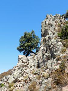 Trekking am Monte Genis