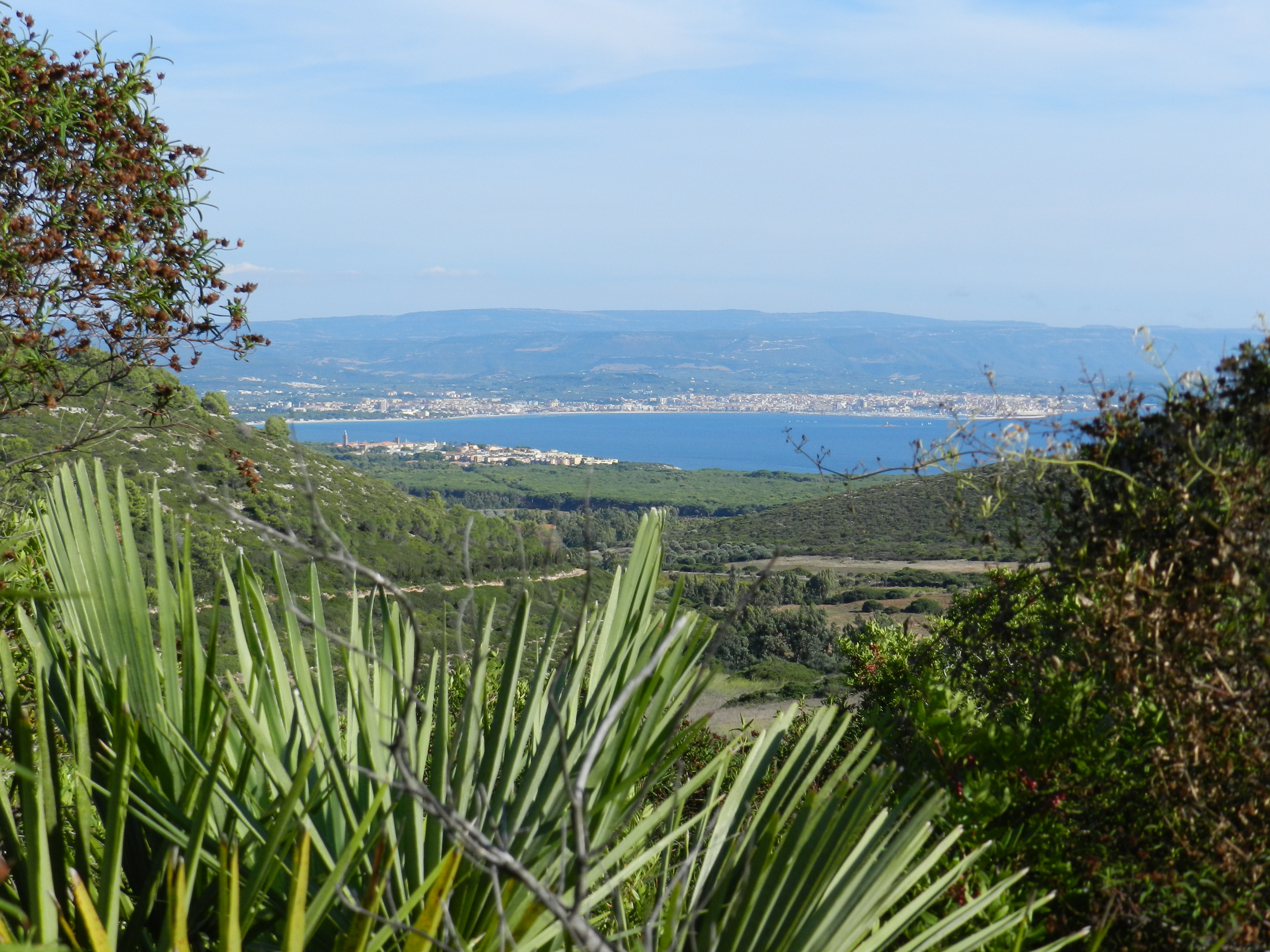 Tipp für Jogger und Biker: Monte Dolia bei Alghero