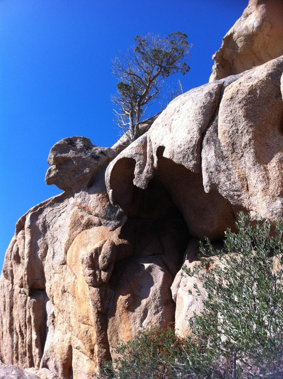 Der Granit der Gallura bot beste Verstecke für Tansu