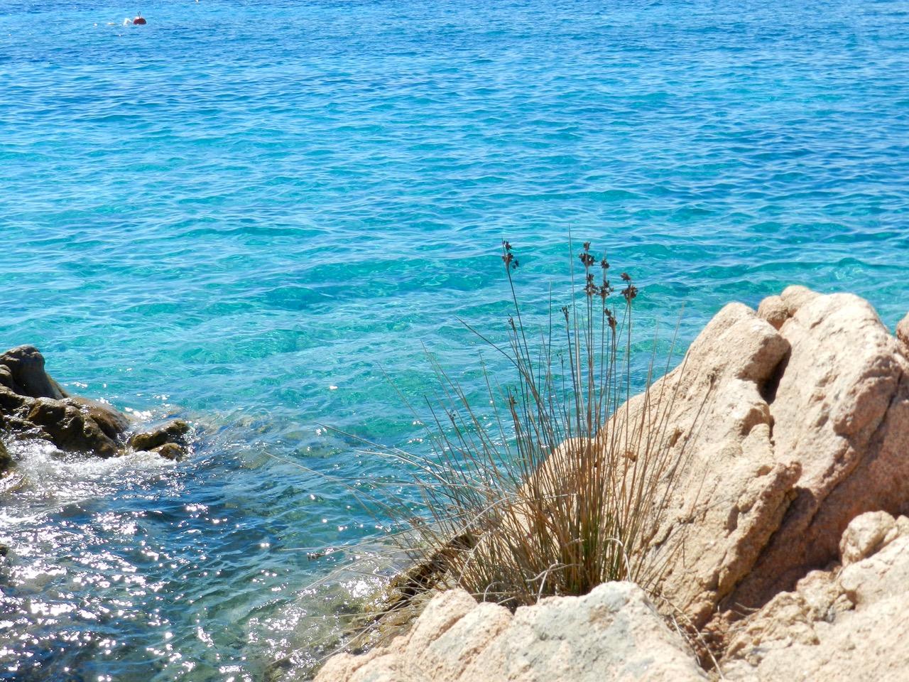 Traumküste im Arcipelago di La Maddalena