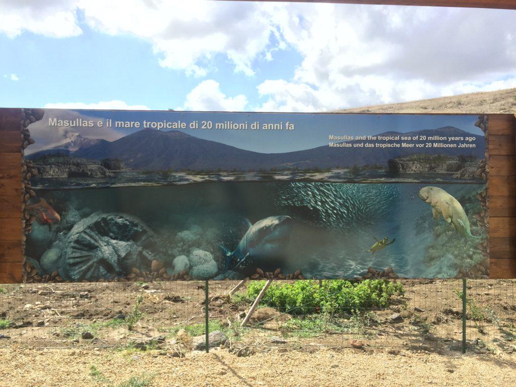 Hier war also vor 20 Millionen Jahren ein Meer ...