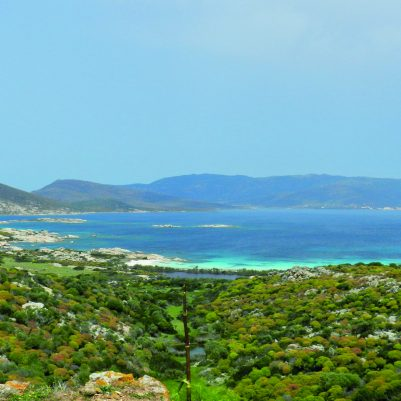 Cala Andrea in der höchsten Schutzzone auf der Isola dell'Asinara