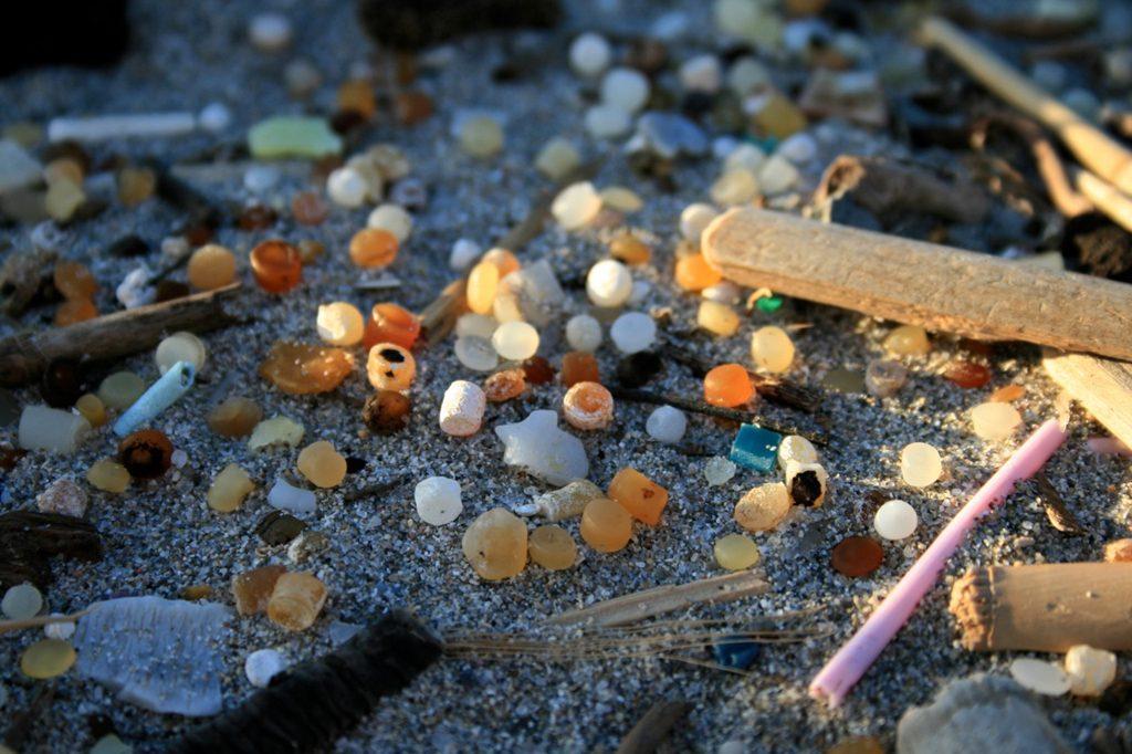 Je kleiner Plastik wird, desto mehr Schaden richtet es an ...