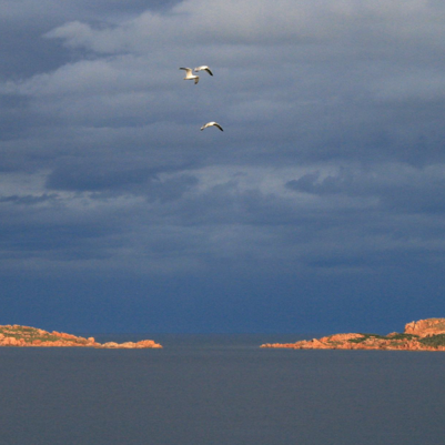 Isole di Li Nibani, Costa Smeralda, im Januar
