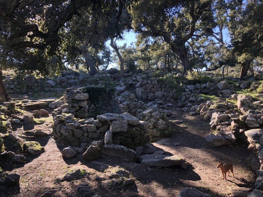 Die heilige Quelle in Noddule: Hier wurde ein Wasserkult gepflegt