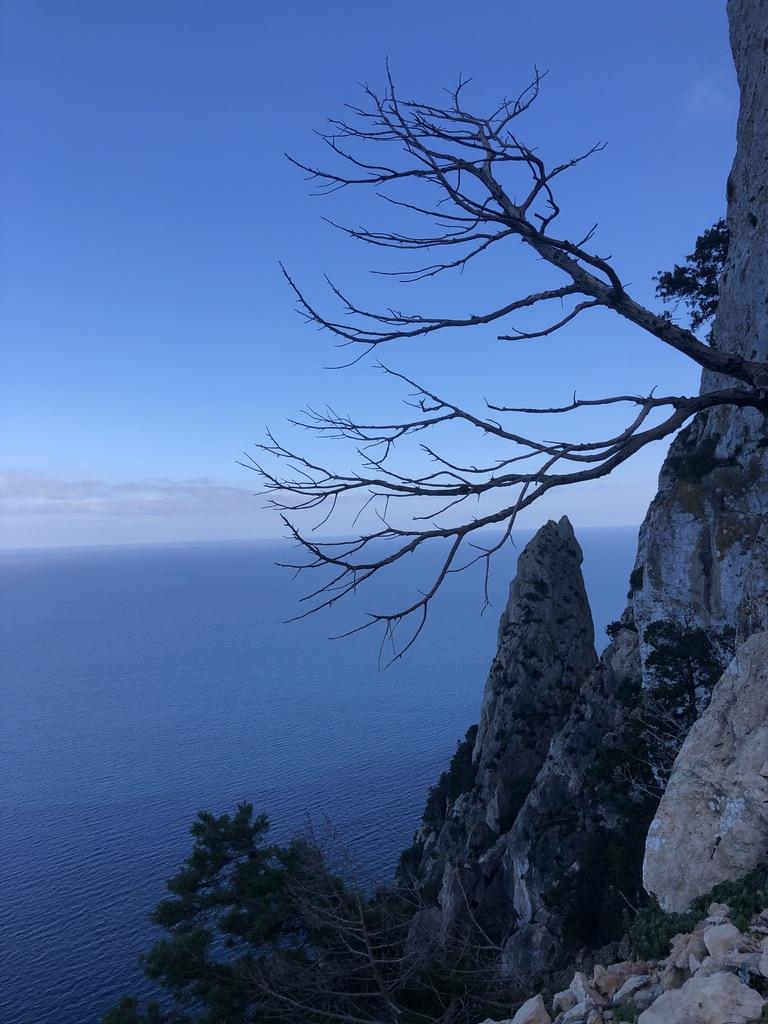 Kurz vorm Abstieg an der letzten Wand am Capo Figari