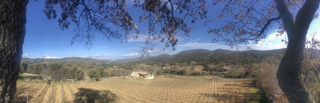 Grandioser Blick über die Landschaft von Mamoiada und die Weinhänge der Cantina Gungui