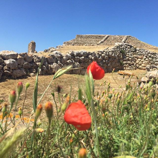 Monte d'Accoddi: Zikkurat aus prä-nuraghischer Zeit