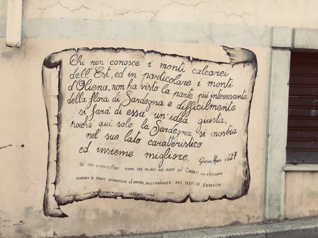 Dem Monte Corrasi ist in Oliena ein Murales gewidmet