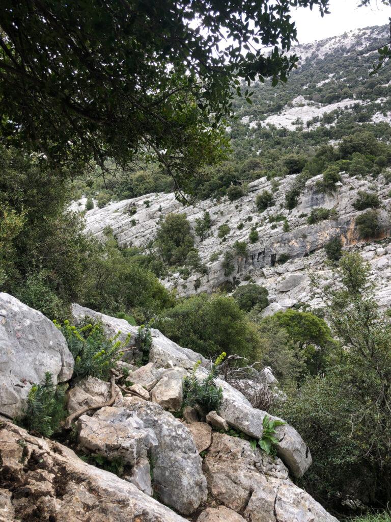 Wunderschöne Landschaft, überall im Supramonte di Urzulei
