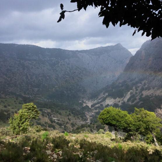 Supramonte di Urzulei - Blick auf Sa Giuntura