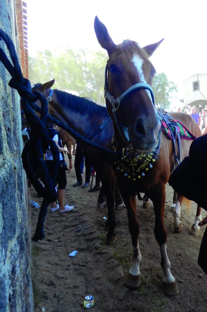Das Pferd des ersten Reiters trägt den Schlachtruf Konstantins
