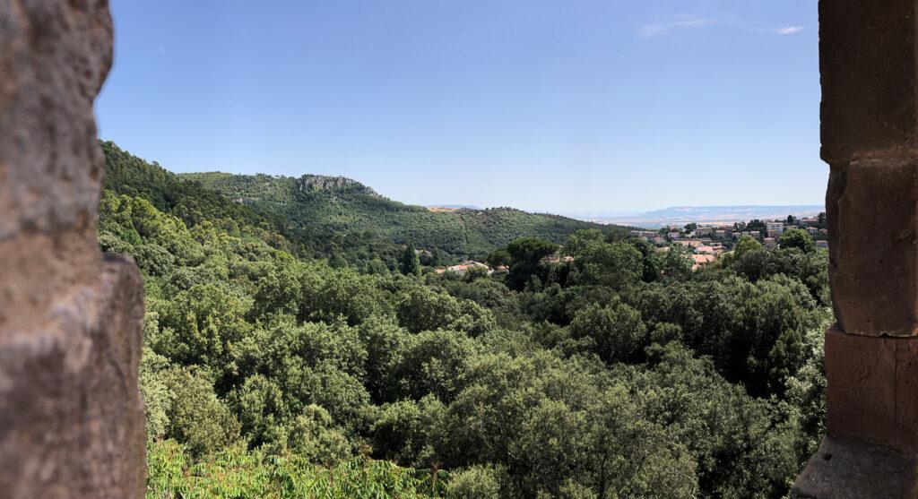 Bick über den immergrünen Parco Aymerich in Laconi